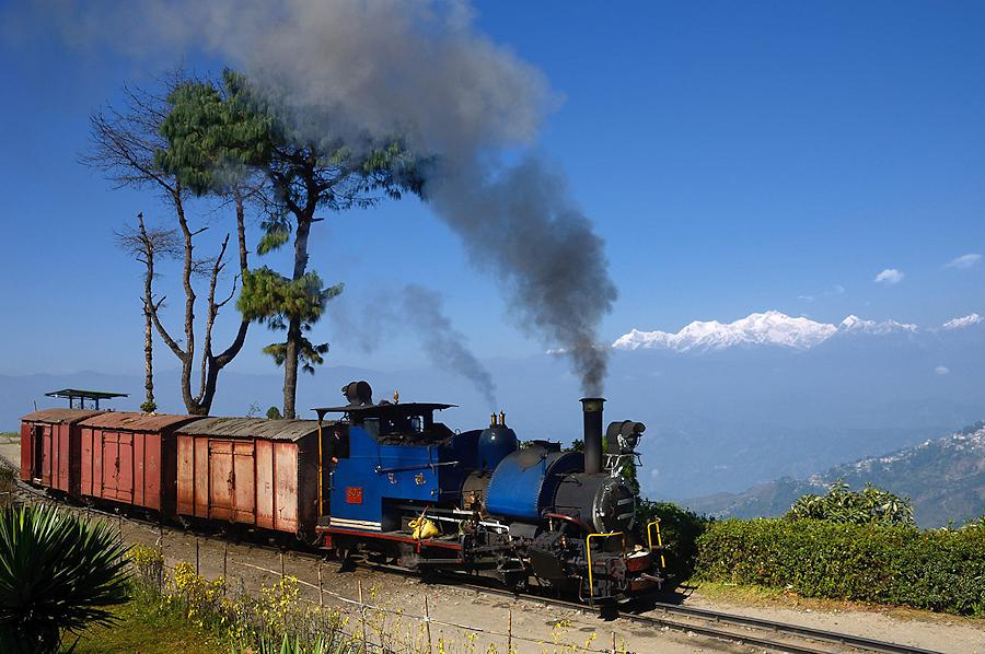 Tanago Indien DHR Darjeeling Batasia Loop