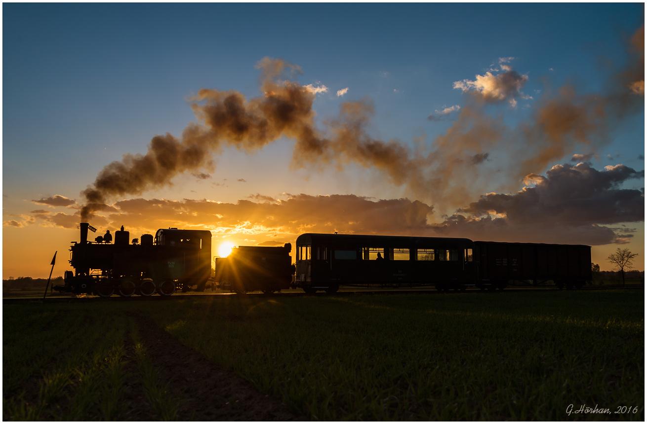 Poland narrow gauge Tanago Railfan tours