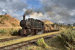 Eritrea 2018 Tanago Eisenbahnreisen / Railfan Tours