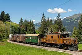 switzerland: Crocodile Summer, September 2021, Tanago Railfan Tours/Eisenbahnreisen Erlebnisreisen