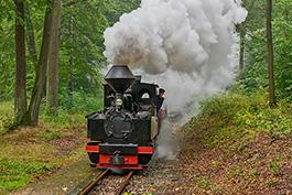 Germany: Brigade meeting on the Muskauer Waldeisenbahn, September 2019, Tanago Railfan Tours/Eisenbahnreisen Erlebnisreisen