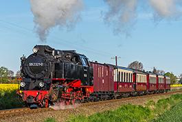 Frühlingsdampf an der Ostsee, Mai 2019, Tanago Railfan Tours / Eisenbahnreisen Erlebnisreisen