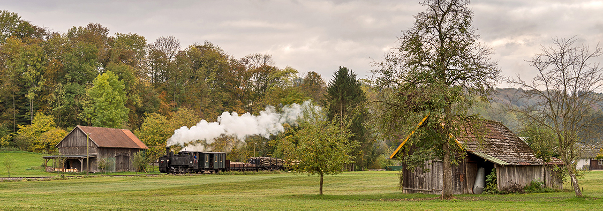 Öchsle steam locomotive Tanago Railfan Tours