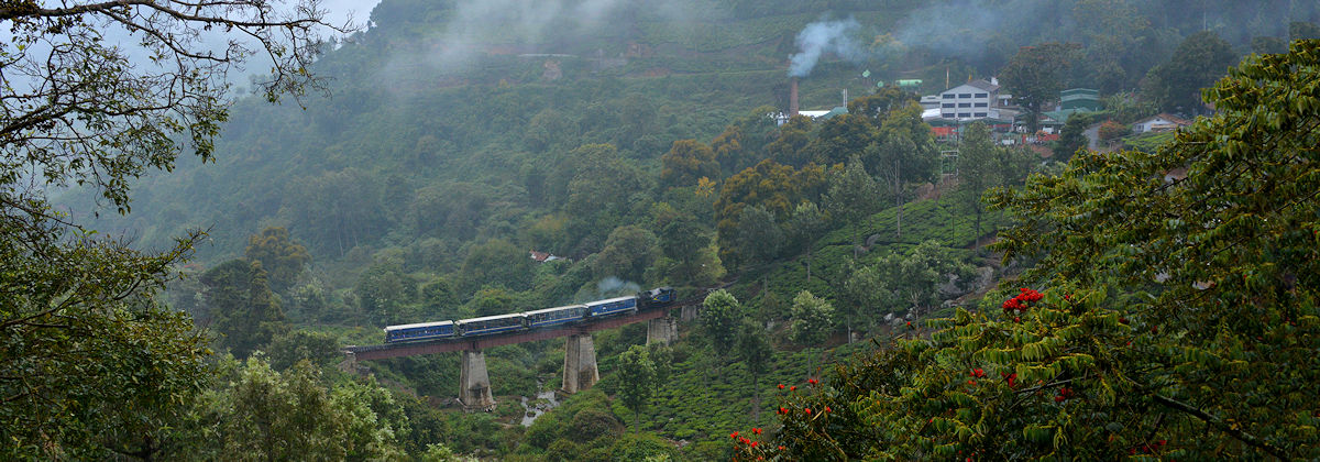India Darjeeling steam photocharter Tanago railfan tours