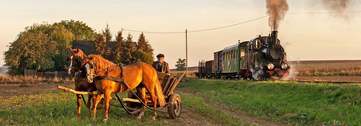 Poland Znin Px38 narrow gauge steam Tanago Railfan tours