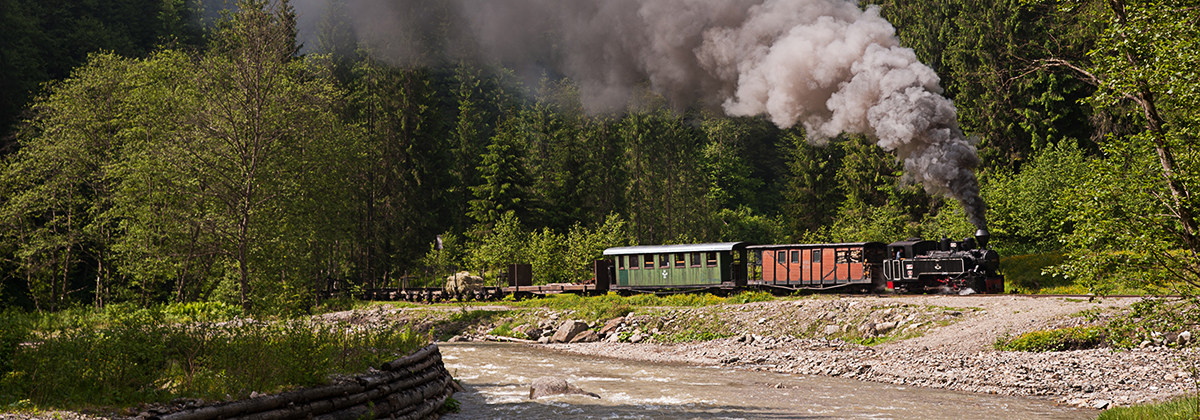 Romania Vaser Valley Forestry Tanago Railfan tours photo charter