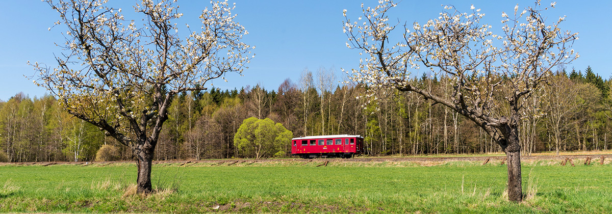 Czechia Diesel power Tanago railfan tours
