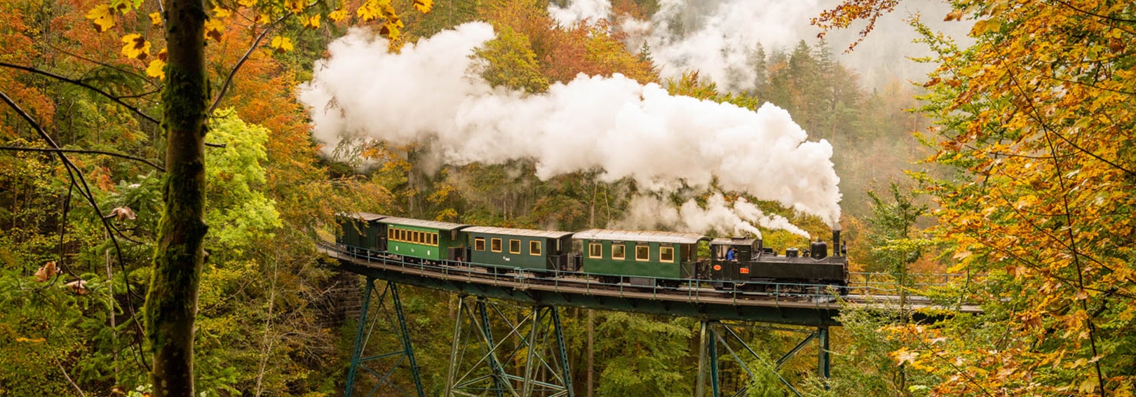Mladejov steam Tanago Railfan tours