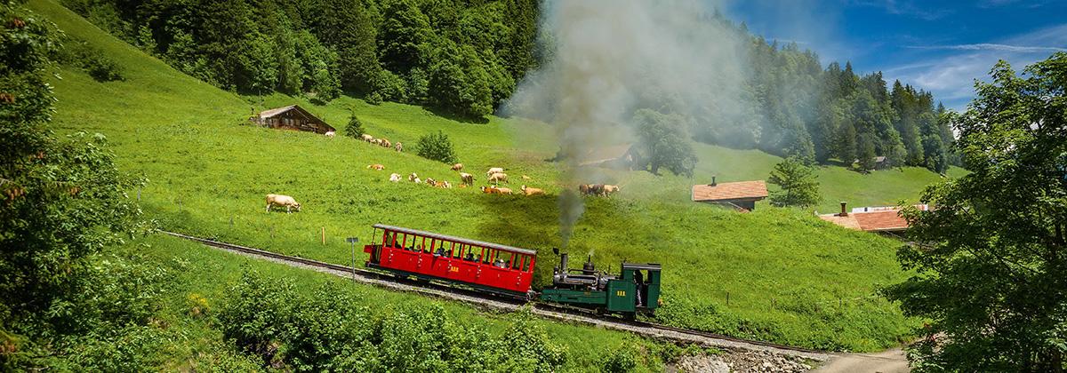 Österreich Steyrtalbahn Dampflok Tanago Erlebnisreisen Eisenbahnreisen
