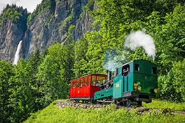 Schweiz: Plandampf am Brienzerhorn, Tanago Eisenbahnreisen Erlebnisreisen