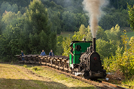 Czech Republic: narrow gauge steam festival in Mladejov, railcar Tanago Railfan tours photo charter