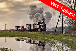 Germany: Baltic Sea steam (Molli + Rügen), railcar Tanago Railfan tours photo charter