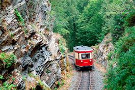 Mit dem T 1 durchs Selketal, Tanago Eisenbahnreisen