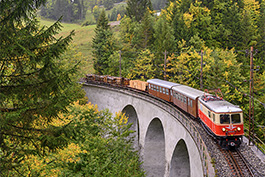 Austria: Narrow garage tour part II, railcar Tanago Railfan tours photo charter