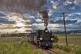 Poland: Narrow-gauge steam in Sroda, railcar Tanago Railfan tours photo charter