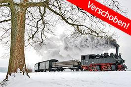 Germany: Selketal – Winter steam, Tanago Railfan tours photo charter