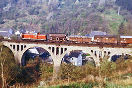 Germany: Steep sections in the Rhine Valley, railcar Tanago Railfan tours photo charter