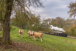 Österreich: Güterzugfestival auf der Steyrtalbahn, Tanago Eisenbahnreisen Erlebnisreisen